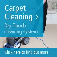 FREE Quote-Carpet Cleaning