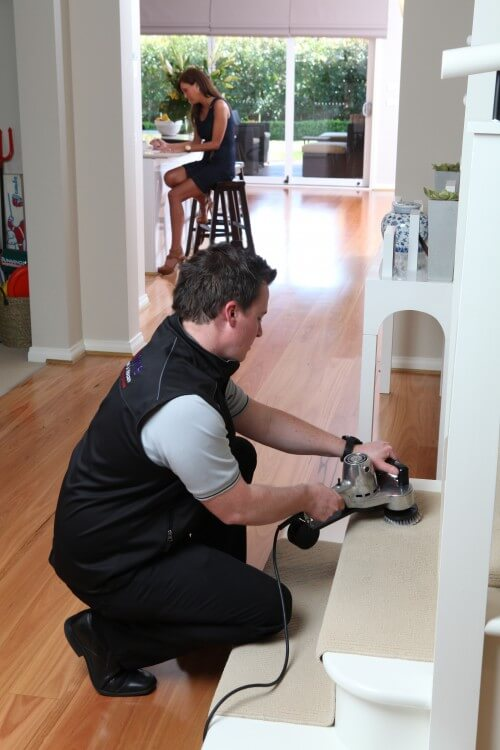 Carpet Cleaning Melbourne, Carpet Cleaning